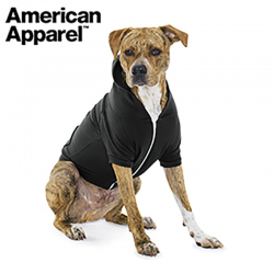 아메리칸어패럴 강아지 후드집업