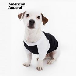 아메리칸어패럴 강아지 나그랑티셔츠